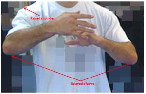 Elbows2